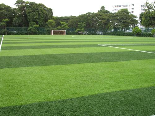 五人制足球场人造草坪