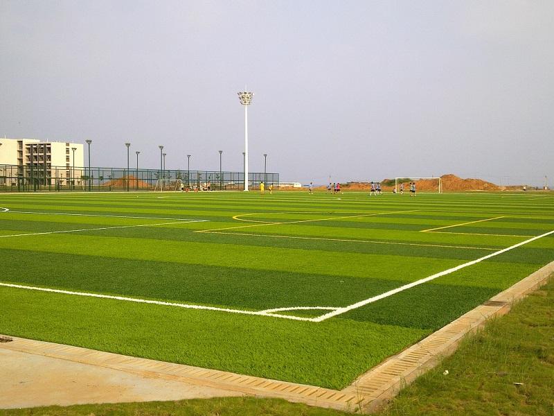 十一人制足球场人造草坪